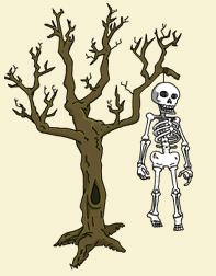 arbre squelette