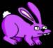 bunny-31